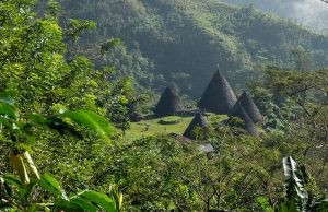 Flores overland and komodo tours, flores tour package 7d6n